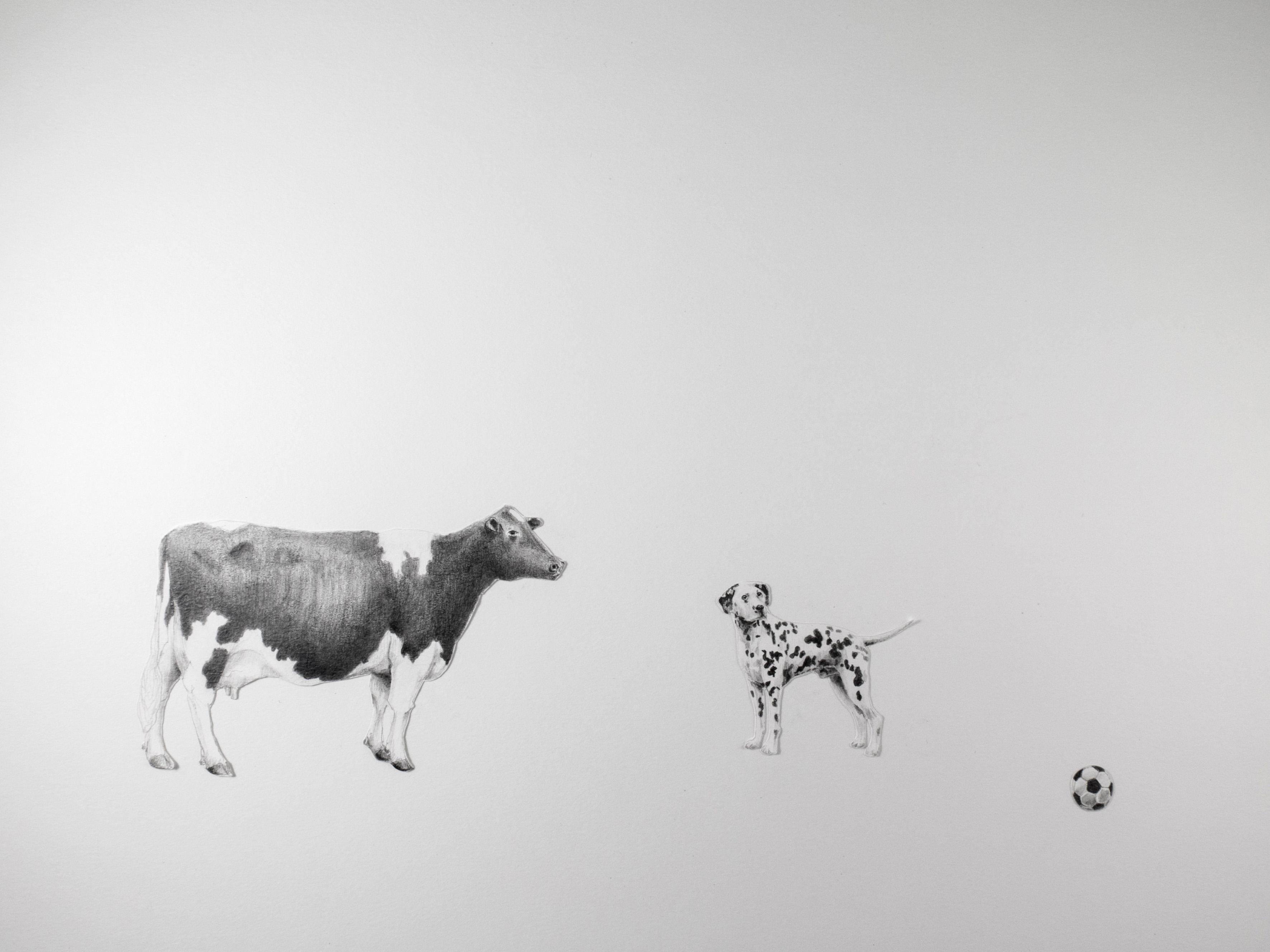 feira-de-desenho-lisboa-drawing-room-argentina-argentino-2019